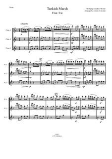 Rondo alla turca: For flute trio by Wolfgang Amadeus Mozart