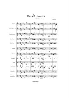 Voices of Spring, Op.410: para grande conjunto by Johann Strauss (Sohn)