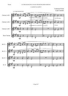Traditional Polish Carols – Clarinet Quartet: Traditional Polish Carols – Clarinet Quartet by folklore