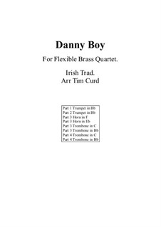 Danny Boy (Londonderry Air): For flexible brass quartet by folklore