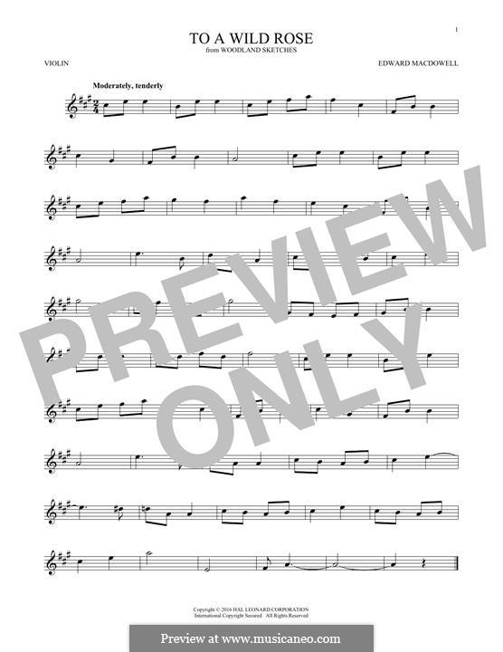 No.1 To a Wild Rose: para violino by Edward MacDowell