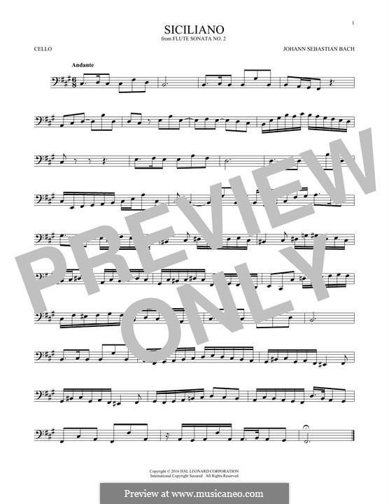 Sonata for Flute and Harpsichord No.2 in E Flat Major, BWV 1031: Siciliano. Arrangement for cello by Johann Sebastian Bach