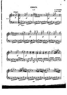 Piano Sonata No.1 in D Minor: movimento I by Lev Stepanovich Gurilev
