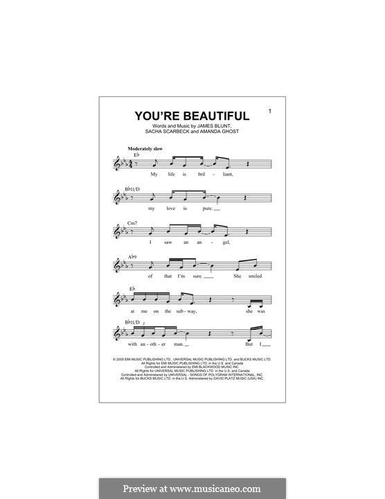 You're Beautiful: melodia by Amanda Ghost, James Blunt, Sacha Skarbek