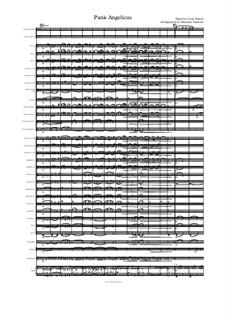 Panis Angelicus (O Lord Most Holy): Para banda de sopro by César Franck