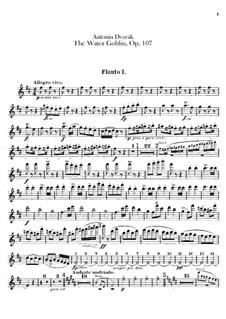 Vodník (The Water Goblin), B.195 Op.107: parte de flautas by Antonín Dvořák