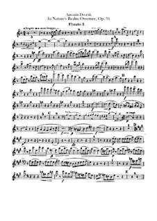 V přírodě (In Nature's Realm), B.168 Op.91: parte de flautas by Antonín Dvořák