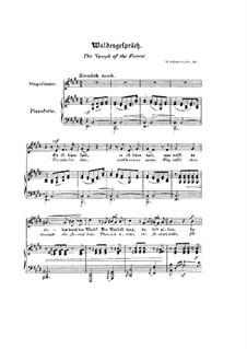 No.3 Waldesgespräch (In the Forest): gravação piano-vocais (Textos inglês e Alemão) by Robert Schumann