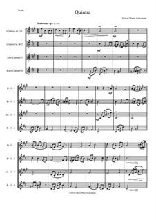 Quintra: For clarinet quartet (E flat, B flat, Alto and Bass) by David W Solomons