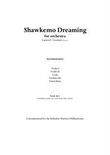 Shawkemo Dreaming (2009) for string orchestra, Op.811: Score and parts by Carson Cooman