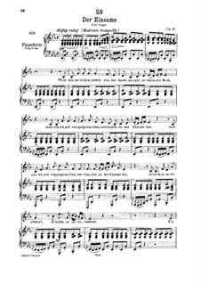 Der Einsame (The Solitary), D.800 Op.41: para voz baixa e piano by Franz Schubert