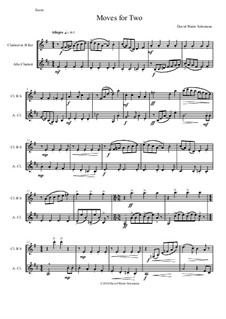 Moves For Two: For B flat clarinet and Alto clarinet by David W Solomons