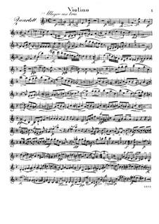 Quartet for Flute and Strings No.1 in D Minor, Op.30: parte do violino by Raphael Dressler