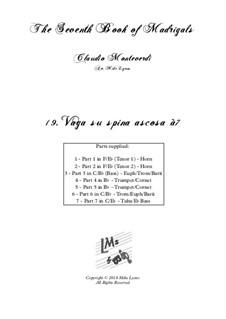Book 7 (Concerto), SV 117–145: No.19 Vaga su spina ascosa à7 by Claudio Monteverdi
