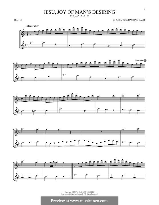 Jesu, Joy of Man's Desiring (Printable Scores): para duas flautas by Johann Sebastian Bach