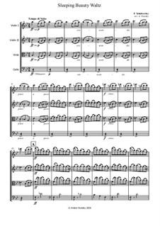 Waltz: para quartetos de cordas by Pyotr Tchaikovsky