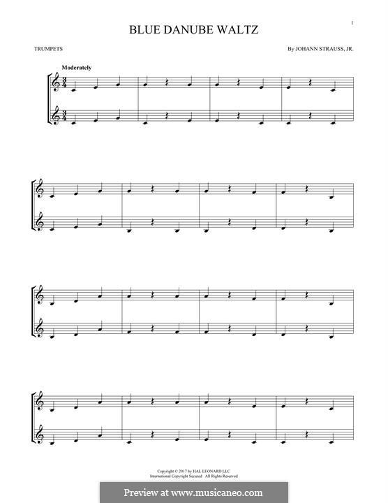 On the Beautiful Blue Danube, Op.314: For two trumpets by Johann Strauss (Sohn)
