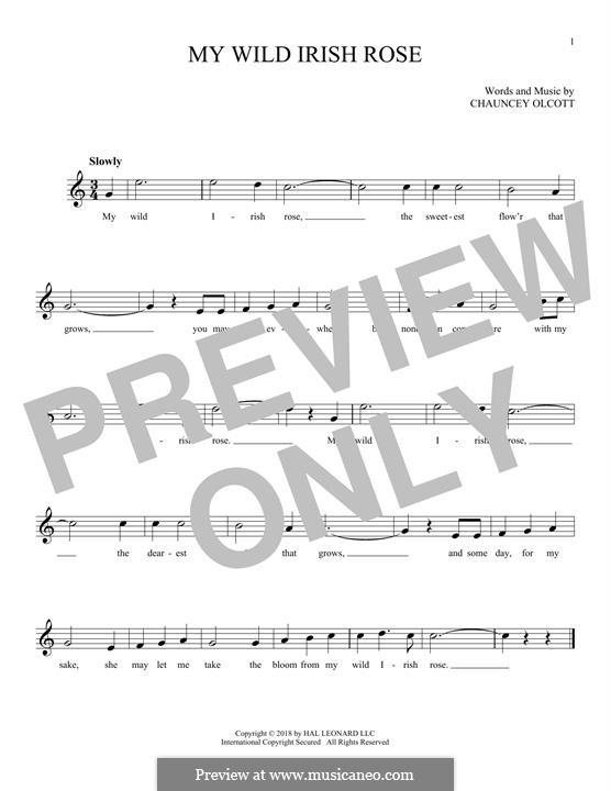 My Wild Irish Rose: melodia by Chauncey Olcott