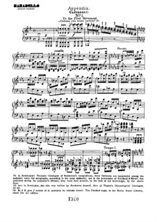 Cadenzas: To movements I, III by Ludwig van Beethoven