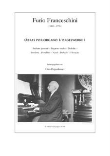 Orgelwerke O: Orgelwerke O by Furio Franceschini