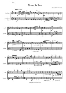 Moves For Two: For alto flute and contrabass flute by David W Solomons