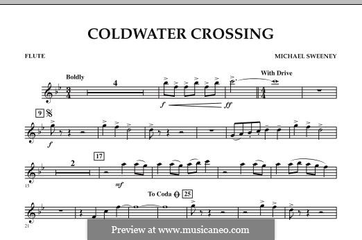 Coldwater Crossing: parte flauta by Michael Sweeney