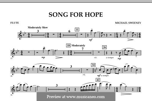 Song for Hope: parte flauta by Michael Sweeney