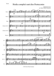 Hodie completi sunt: For wind sextet (2 flutes, oboe, 2 clarinets, bassoon) by Orlande de Lassus