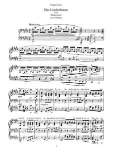 No.5 Der Lindenbaum (The Linden Tree): arranjo para piano, S.561 No.7 by Franz Schubert