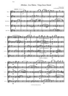 Alleluia - Ave Maria - Virga Jesse floruit: For flute quintet by William Byrd