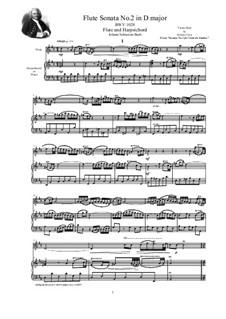 Sonata for Viola da Gamba and Harpsichord No.2 in D Major, BWV 1028: Arrangement for flute and harpsichord (or piano) by Johann Sebastian Bach