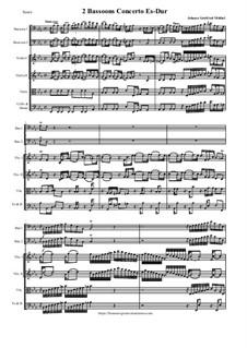2 Bassoons Concerto Es-Dur: 2 Bassoons Concerto Es-Dur by Johann Gottfried Müthel