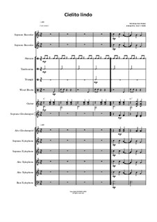 Cielito Lindo: For orff ensemble by folklore