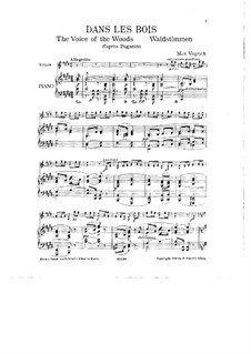 The Voice of the Woods after Paganini for Violin and Piano: The Voice of the Woods after Paganini for Violin and Piano by Max Vogrich