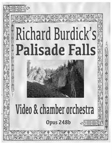 Palisade Falls: para orquestra de camara, Op.248b by Richard Burdick