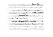 Concerto for Viola and Orchestra in B Flat Major (Unfinished), BI 555: Parte de solo by Alessandro Rolla