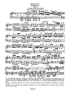 Cadenzas: To movements I by Ludwig van Beethoven