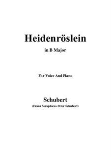 Heidenröslein (Little Hedge Rose), D.257 Op.3 No.3: For voice and piano (B Major) by Franz Schubert