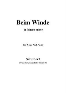 Beim Winde (When the Wind Blows), D.669: F sharp minor by Franz Schubert