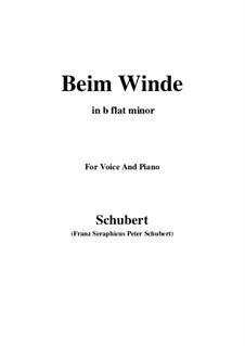 Beim Winde (When the Wind Blows), D.669: B flat minor by Franz Schubert