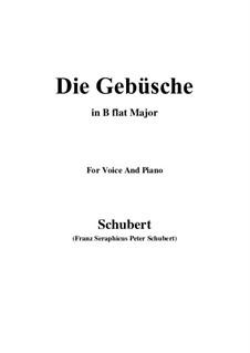 Die Gebüsche (The Bushes), D.646: B flat Maior by Franz Schubert