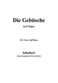 Die Gebüsche (The Bushes), D.646: E Major by Franz Schubert