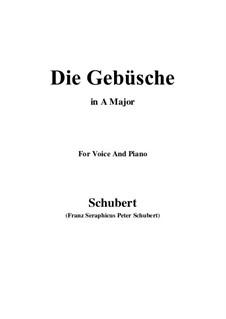 Die Gebüsche (The Bushes), D.646: A maior by Franz Schubert