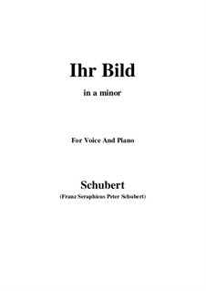No.9 Ihr Bild (Her Portrait): For voice and piano (a minor) by Franz Schubert