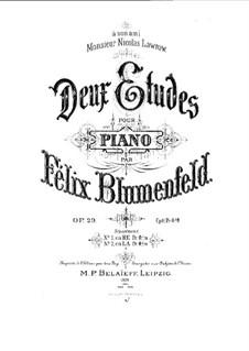 Two Etudes, Op.29: set completo by Felix Blumenfeld