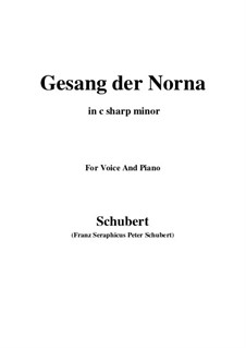 No.13 Der Doppelgänger (The Double): For voice and piano (f sharp minor) by Franz Schubert