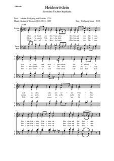 Heidenröslein (Sah ein Knab ein Röslein stehn): Für Chor by Heinrich Werner