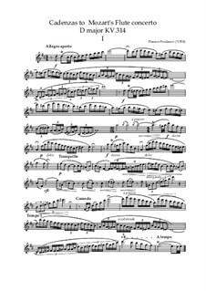 Kadenzaas to Mozart's Flute Concerto D major KV.314: Kadenzaas to Mozart's Flute Concerto D major KV.314 by Plamen Prodanov