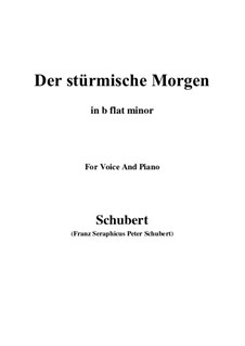 No.18 Der stürmische Morgen (The Stormy Morning): For voice and piano (d minor) by Franz Schubert