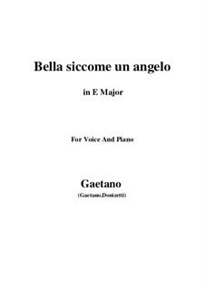 Don Pasquale: Bella siccome un angelo (E Major) by Gaetano Donizetti